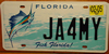 Fish Florida Sailfish License Plate