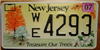New Jersey Trees License Plate